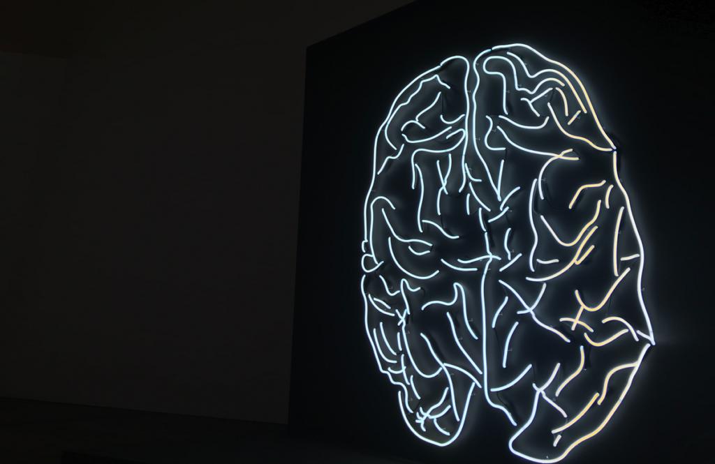 Hjernen lyser op når du er kreativ
